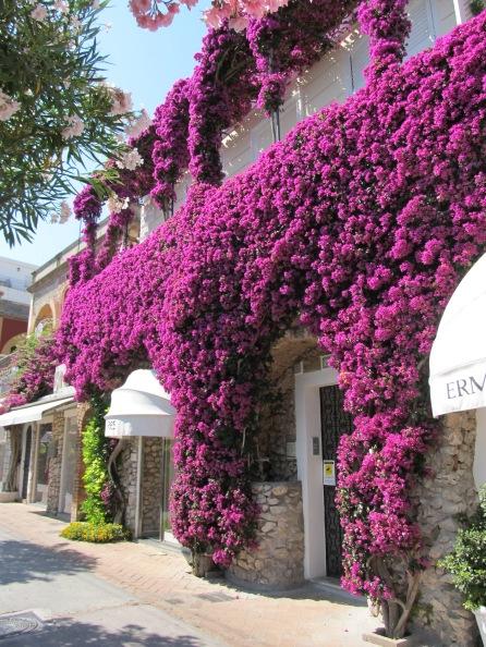 Amalfi and Sorrentine Coast (17)